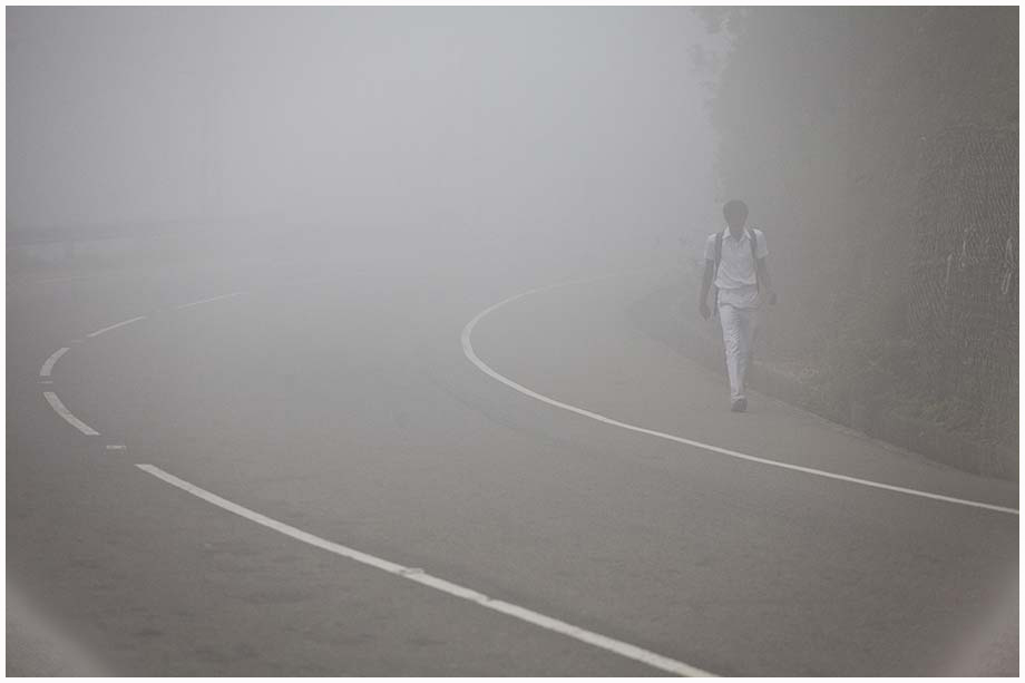 samotna podróż we mgle
