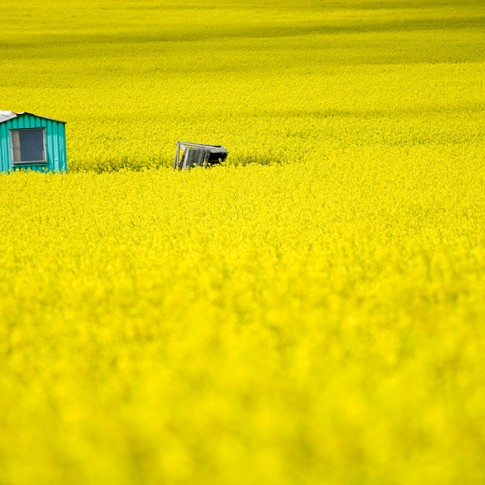 fotografia podróżnicza fotograf Mariusz Stachowiak oderwany