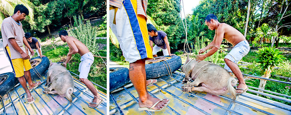 filipiny-na-wlasna-reke-oderwany