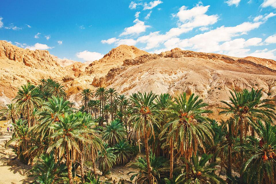 tunezja-podroznicza-fotografia-stachowiak-mariusz