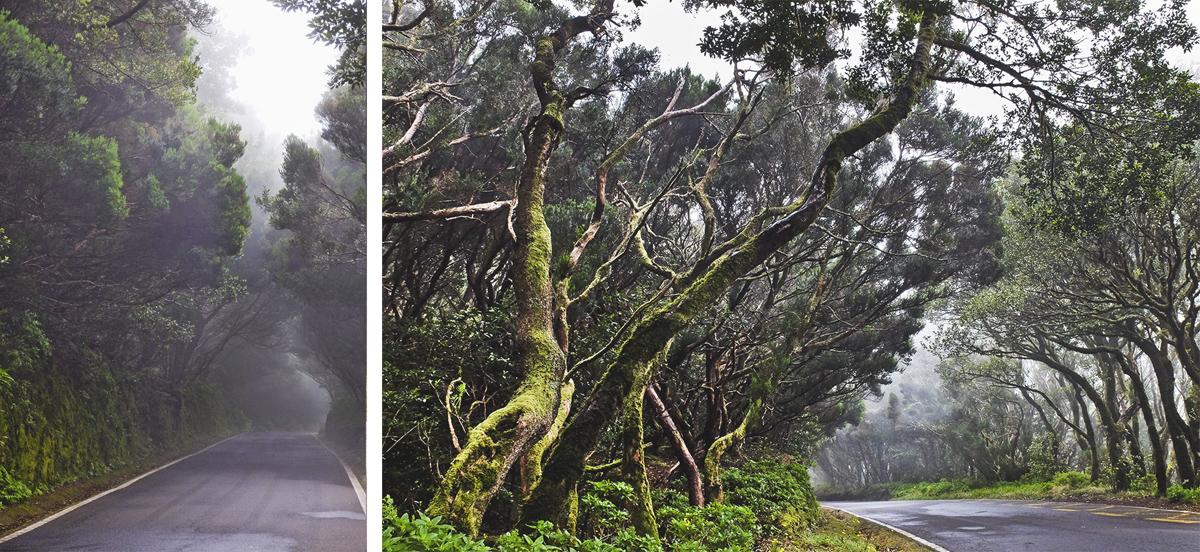 teneryfa fotografie z podróży mariusz stachowiak