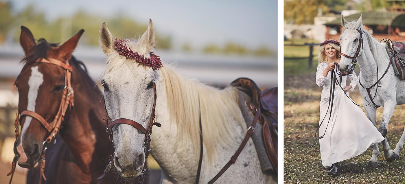 sesja ślubna w stadninie koni opole stachowiak