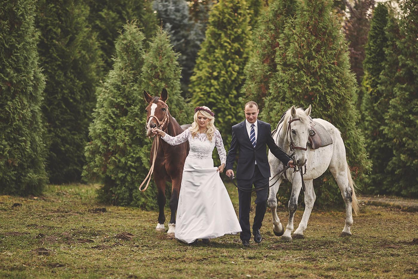sesja ślubna w stadninie koni wrocław stachowiak
